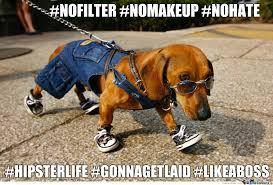 Hipster Dog Meme - hipster dog by valgekht meme center