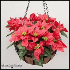 poinsettia mounted in garden hanging basket