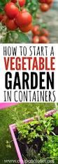 pots in gardens ideas best container vegetable gardening ideas on pinterest growing