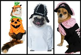 Puppy Halloween Costumes Cutest Pet Halloween Costumes Cats Dogs