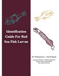 identification guide of larval fish in the red sea pdf download