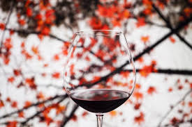 something to wine about 10 autumn wines to spice up thanksgiving