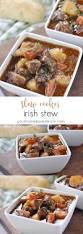 Alton Brown Beef Stew Best 25 Irish Lamb Stew Ideas On Pinterest Lamb Stew Recipes