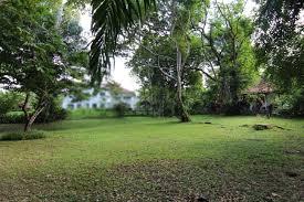 land plots for sale nassim road gcb land plots up for sale property market