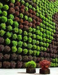 Best Plants For Vertical Garden - vertical garden design ideas marvelous 26 creative ways to plant a