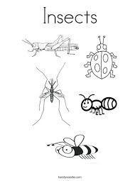 coloring pages insects bugs insects coloring page from bugs and more theme insects coloring page