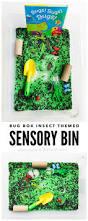 thanksgiving sensory bin bug box insect themed sensory bin plain vanilla mom