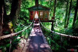 unique wedding reception locations top 26 coolest places to get married in the us treehouse