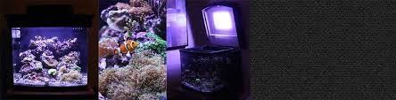 Reef Aquarium Lighting Diy Led Aquapod Reef Tank