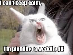 Wedding Planning Memes - top 10 wedding memes