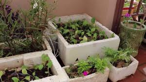 Vegetable Container Garden - plant adaptation flower arrangement and vegetable container