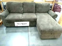 Sleeper Sofa With Storage Chaise Sleeper Chaise Lounge Top Extraordinary Vision Sectional Sleeper