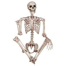 poseable skeleton skeleton poseable decor target