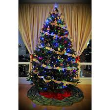 fraser fir christmas tree chicago s best fraser fir christmas tree delivered setup and