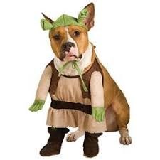 Pitbull Dog Halloween Costumes Silly Dog Halloween Costumes