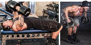 Full Body Dumbbell Workout No Bench Kris Gethin U0027s Full Body Superset Thrasher Workout