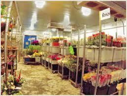 Flower Wholesale Best Wholesale Floral Supplies Photos 2017 U2013 Blue Maize