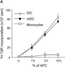human dendritic cells activate resting natural killer nk cells