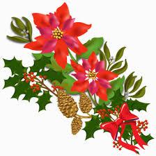 christmas flowers christmas flower clipart clipartxtras