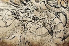 japanese dragon tattoo sketch u2014 stock photo outsiderzone 43501561