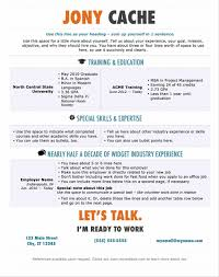 Best Size Font For Resume Classy Ideal Font Size In Resume In Best 20 Resume Fonts Ideas On