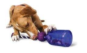 best indestructible dog toys for aggressive chewers flying disc