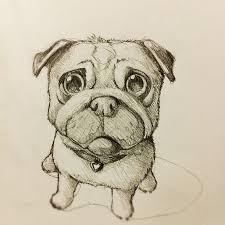 drawn randome pug puppy pencil and in color drawn randome pug puppy