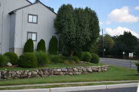 timber valley condo townhouses of ramsey nj
