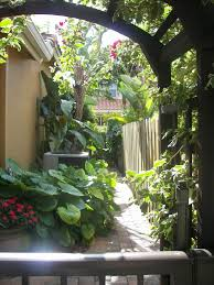 Florida Backyard Landscaping Ideas by 96 Best Florida Landscapes Images On Pinterest Gardens