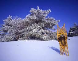 mn landscape arboretum winter fun at the minnesota landscape arboretum minnesota
