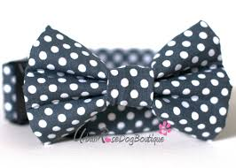 boston designer polka dark grey and white dots dog collar u0026