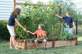now anyone can grow their own food