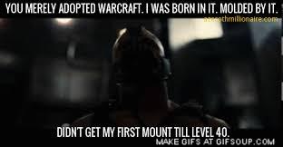 Warcraft Memes - world of warcraft memes the azeroth millioniare