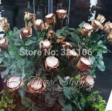 aliexpress com buy free shipping 20 golden rose flower seeds