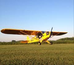 the skycatcher u0027s death proves the lsa rule is a failure air