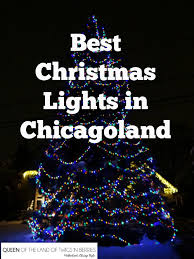 best christmas lights in chicagoland queen of the land of twigs