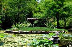 Zilker Botanical Garden Zilker Botanical Garden