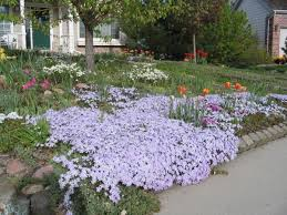 How To Start A Flower Garden In Your Backyard 19 Landscape Design Nc State Extension Publications