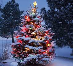 Light Keeper Pro Instructions How To Fix Christmas Lights