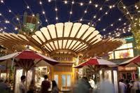 thanksgiving at catal restaurant uva bar great taste events
