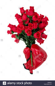 Dozen Of Roses Tough Love Of Roses Shown By Red Boxing Gloves Holding A Dozen Red