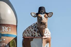 coburg cow charleston south carolina sc