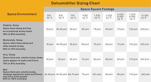 how to choose a dehumidifier of crawlspace u0026 basement series