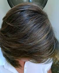 highlights to hide greyhair highlights hide grey hairs picture galleryrhhairspicturecom