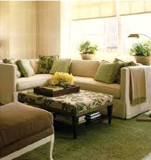 Living Room Rug Ideas Sage Green Living Room Rugs Mint Rug Decorating Ideas U2013 Weightloss