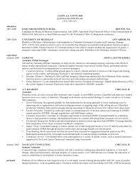 Undergraduate Resume Template Word Cover Letter Harvard Business Resume Format Harvard