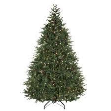 pine christmas tree ne wall