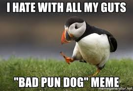i hate with all my guts bad pun dog meme unpopular opinion