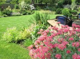 Landscaping Portland Oregon by 59 Best Portland Gardens U0026 Plants Images On Pinterest Portland
