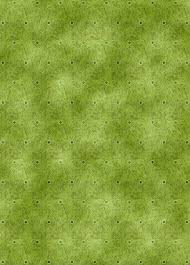 Affordable Home Decor Catalogs Imageafter Photos Patch Of Grass Garden Floor Green Shoots Loversiq